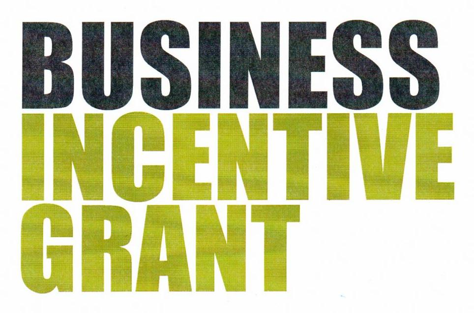 Business Incentive Grant Logo.jpg